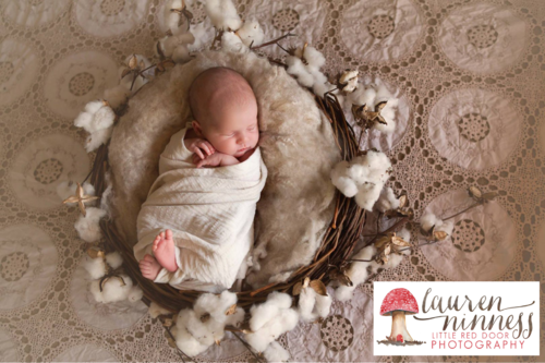 Little Red Door Photography - Gift Voucher