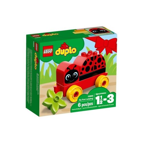 Big Brother or Sister Gift - Duplo Ladybird
